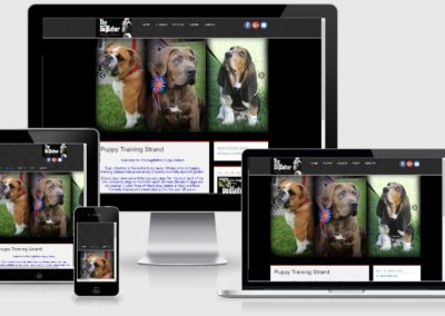 the dogfather puppy school design by web chameleon